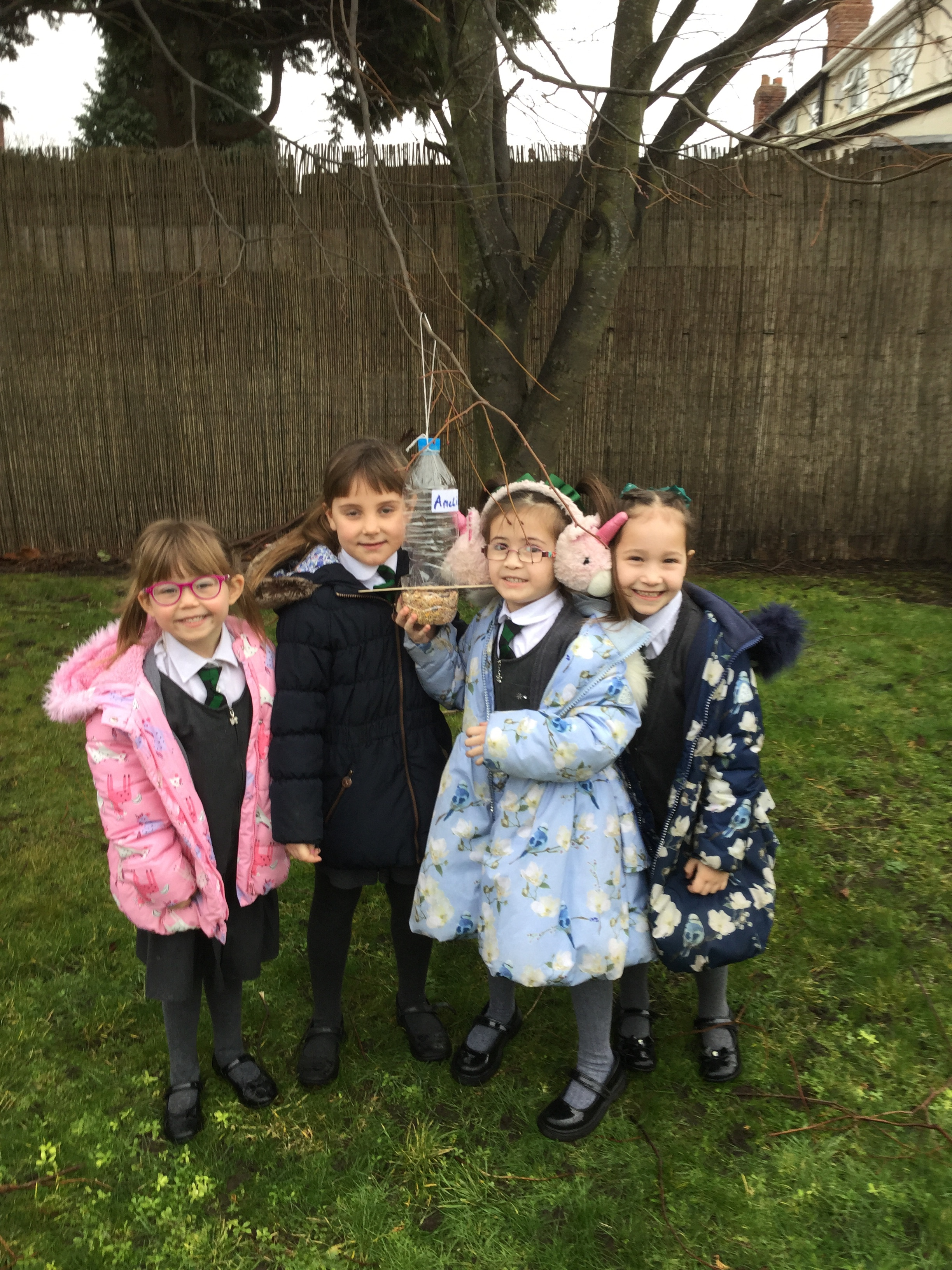 Y1 Bird feeders