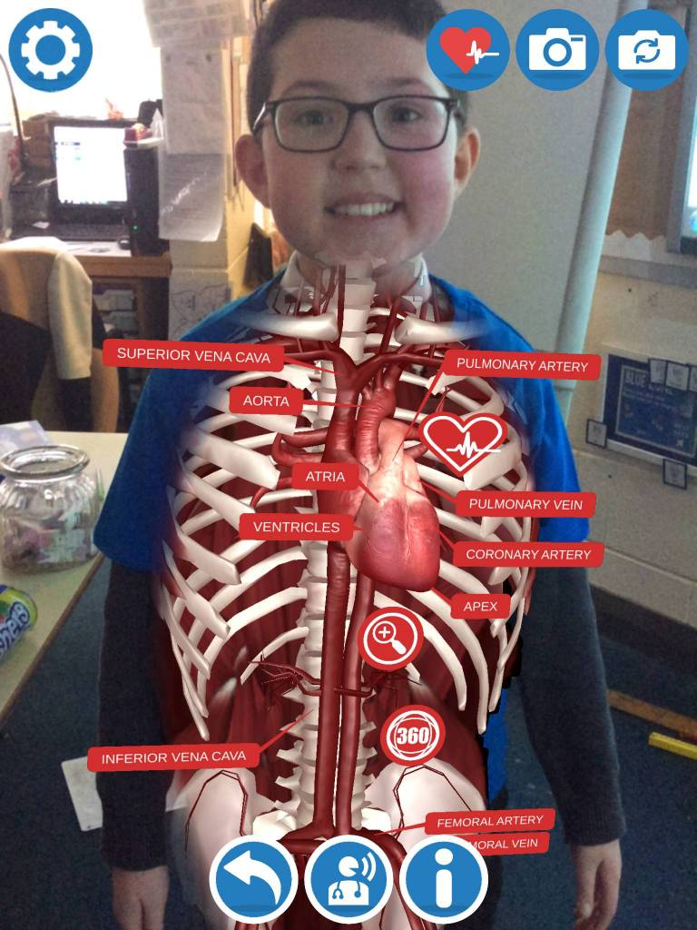 Virtual Reality Circulatory System