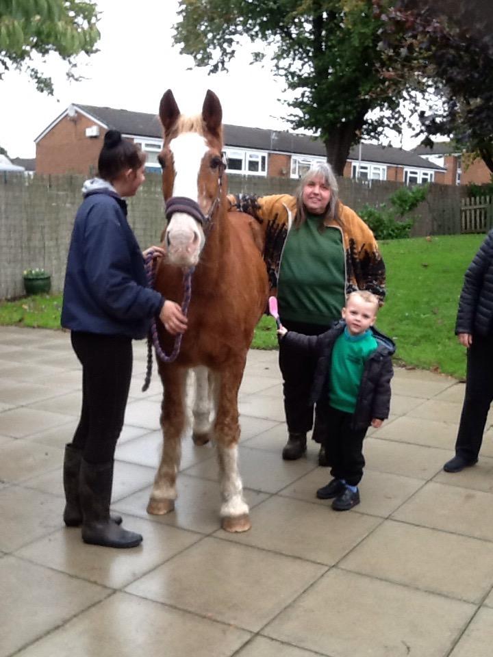 Nursery Pony Visit